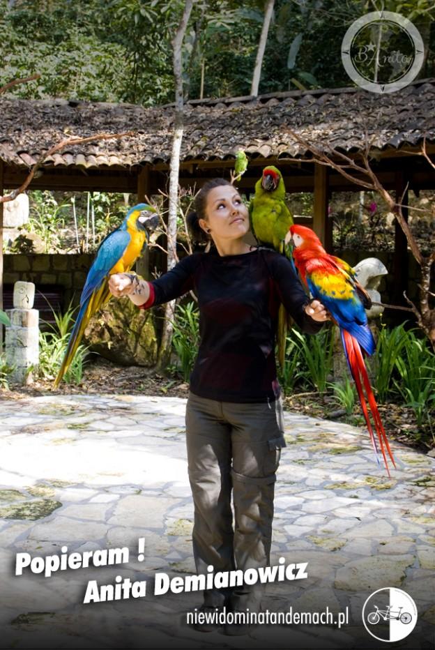 Egzotyczny ogród. W środku kadru na kamiennej posadce postać kobiety z rozłożonymi rękoma. trzy duże kolorowe papugi siedzą  na rękach i ramieniu. W tle drewniana altana i egzotyczna roślinność.